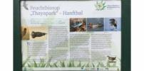Retten wir unser einzigartiges Biotop im Thayapark!